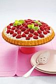 Raspberry flan