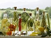 Eight different bottles of vinegar