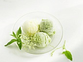 Elderflower- and sorrel ice cream, lemon verbena and lemon sorbet