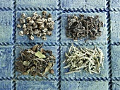 Four different types of green tea