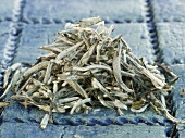 A heap of white tea leaves