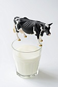 Glass of milk with toy cow