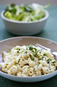 Macaroni with cheese and herbs