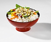 Rice with vegetables and mung bean sprouts