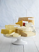 Various cheeses with labels on cake stand