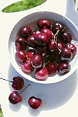 Cherries in a bowl of water