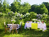 Two tables, one with dishes of food, in front of lilac bushes