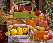 Quinces, pears & apples in wooden carriers, juice in bottles