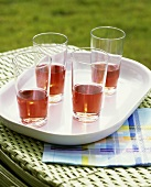 Rosé wine for picnic