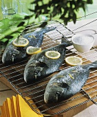 Sea bream with salt and lemon slices on a grill rack