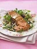 Heiss geräucherter Lachs auf Salat