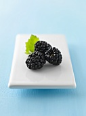 Blackberries on porcelain