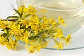 A cup of golden rod tea and fresh flowers