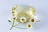A cup of feverfew tea and fresh flowers