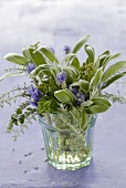 Small bunch of herbs in a glass