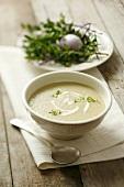 Creamed chicory and potato soup