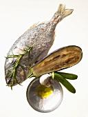 Mediterranean diet: sea bream, aubergine, courgette, olive oil