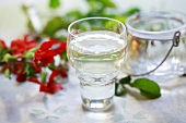 A glass of quince schnapps