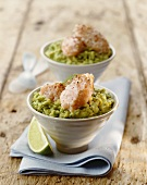 Salmon mousse on avocado cream