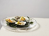 Oysters with cucumber and trout caviar on seaweed
