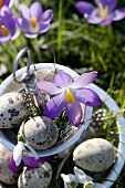 Wild crocuses, snowdrops and quails' eggs on tiered stand