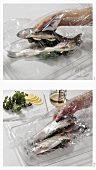 Cooking trout with herb stuffing in a roasting bag