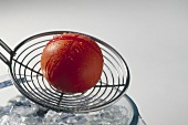 Blanched tomato on a skimmer