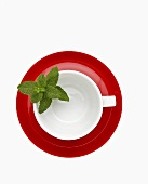 White teacup with mint leaves and red saucer