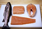 Still life with trout, salmon fillet and salmon steak