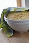 Yeast dough in a bowl