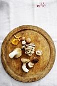 Various types of mushrooms on wooden board