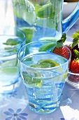 Mineral water with lemon wedges, mint and ice cubes