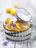 Lavender and apricot tart with icing sugar