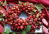Wreath of crab-apples