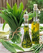 Bunch of ramsons (wild garlic) and ramsons oil