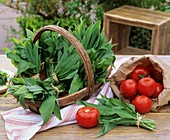 Freshly picked ramsons leaves (wild garlic) and tomatoes