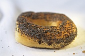 Poppy seed bagel, toasted