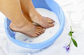 Someone bathing their feet in milk with cornflowers