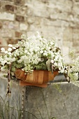 Basket of cow parsley