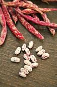 Borlotti beans, shelled and unshelled
