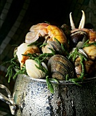 Shellfish with samphire in pot