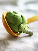 An artichoke on a wooden spoon