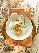 Spicy peach and yoghurt soup with king prawn