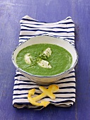 Cream of spinach soup with quark dumplings with pistachios