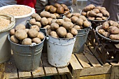 Potatoes in buckets at a market in Ukraine