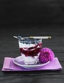 Blueberries with fruit yoghurt on dark background