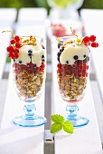 Muesli with fresh berries and vanilla yoghurt