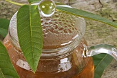 Walnut leaf tea in a glass teapot