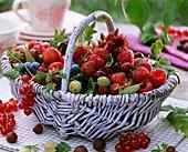 Korb mit frischen Beeren