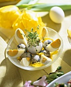Boiled eggs, cress in eggshell and quails' eggs